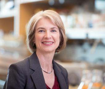 UC Berkeley's Jennifer Doudna wins 2020 Nobel Prize in ...
